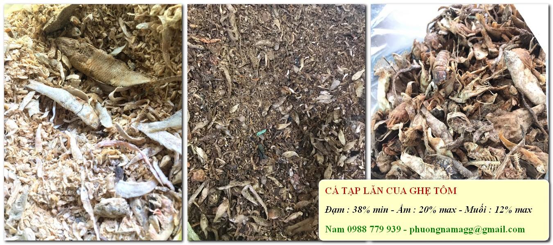 ca-tap-lan-cua-ghe-tom-2527