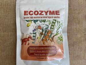 ECOZYME - Cắt tảo, xử lý nước ao nuôi hiệu quả